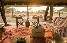 Ultimate Africa Wildlife Honeymoon