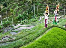 Bali Honeymoons