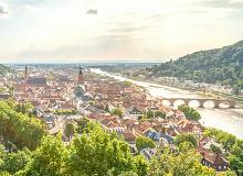 Captivating Rhine