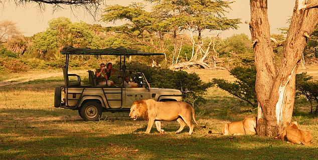 Selous Game Drive