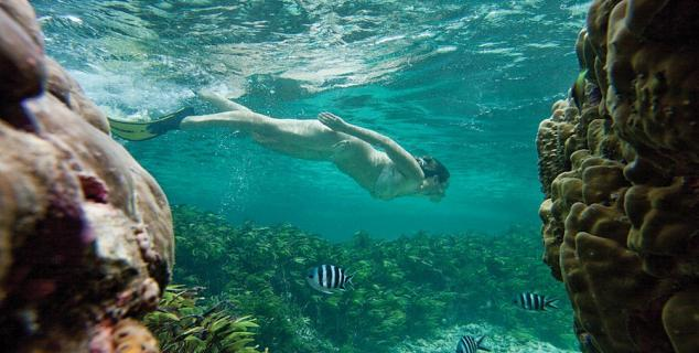 Snorkelling at Desroches