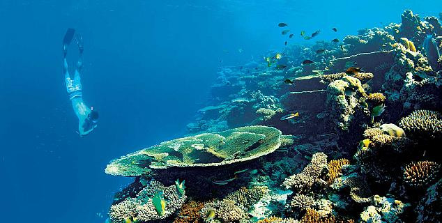 Kanuhura Maldives Jasmine Holidays